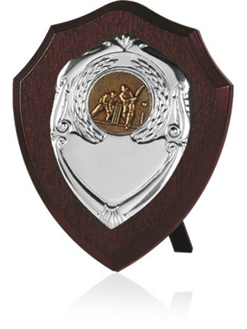 """Shield 6"""""""