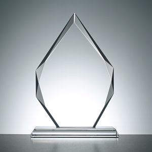 Medium Clear Diamond Trophy 22 x 15.5 x 1.6cm